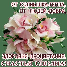 @ZDOROVIYA SPOLNA